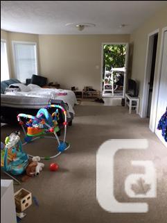 1 Bedroom 1 Bathroom Garden Suite In Colwood In Victoria British Columbia Classifieds
