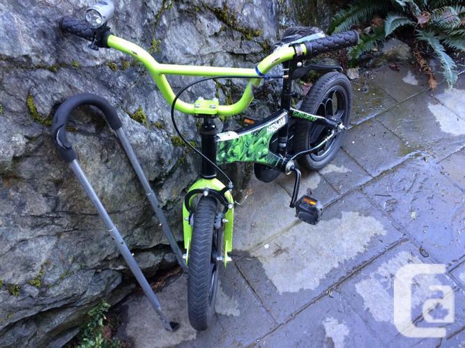 """14"""" TMNT - Shellheads Bike"""