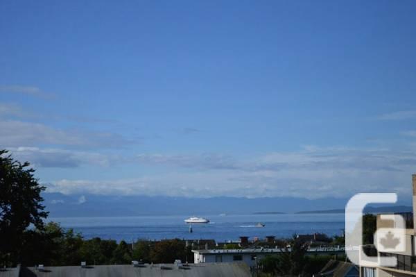 $1960 / 2br - 1000ft² - $1000 move in bonus! Ocean view