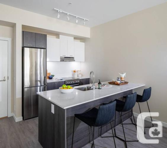 1Bed + 1Bath - Large Dogs Welcome! Courtyard Homes