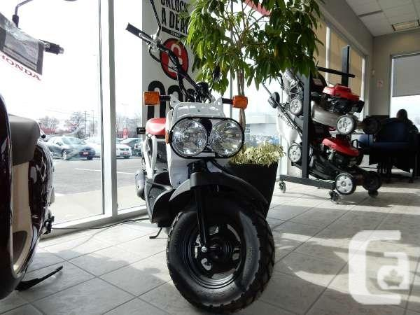 $2,726 2013 Honda Ruckus Motorcycle for Sale