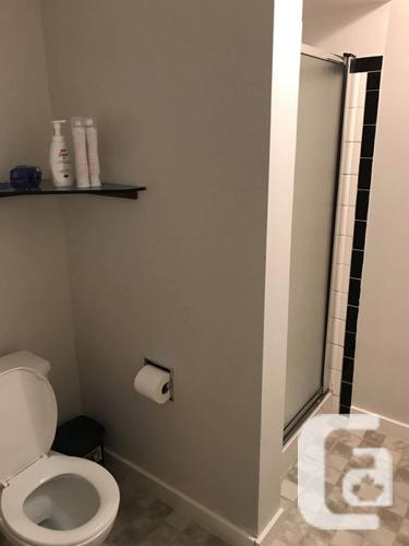 2 bedroom apartment available Jan 1st in Downtown