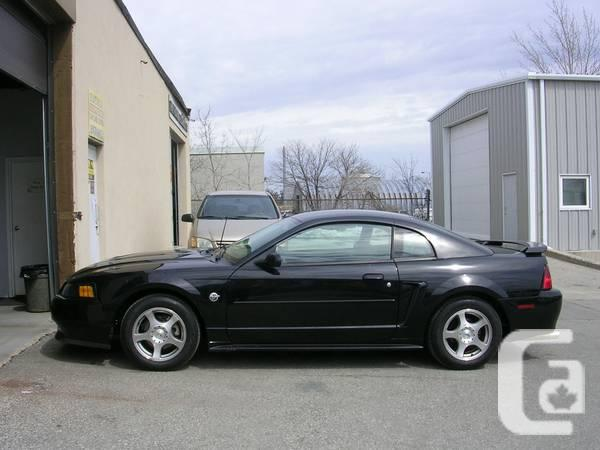 2004 ford mustang coupe 40th anniversary edition clean car fax for sale in toronto ontario. Black Bedroom Furniture Sets. Home Design Ideas