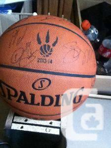 2013-14 autographed Toronto Raptors ball - $225