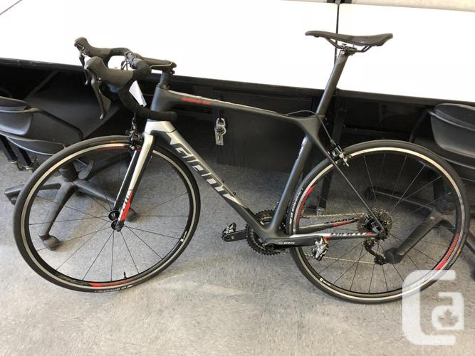 2019 Giant TCR Advanced 2 Silver/Black M or ML