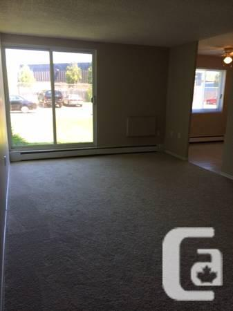 $700 / 1br - JULY FREE LEASE...along with a 40