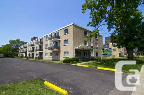 $730 / 1br - FREE LEASE...HALF OF SEPTEMBER ALSO!