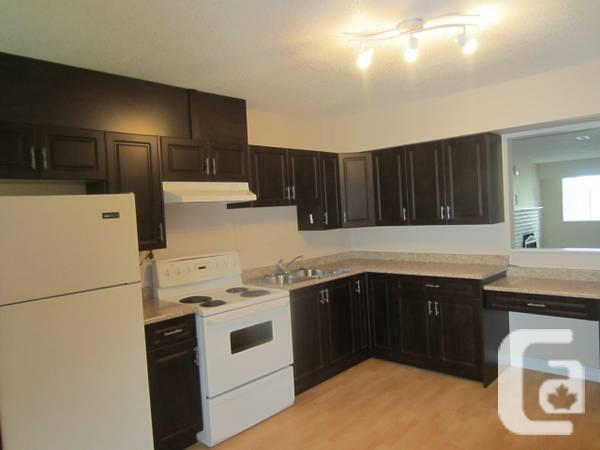 - $800 / 2br - recently revovated basement suite