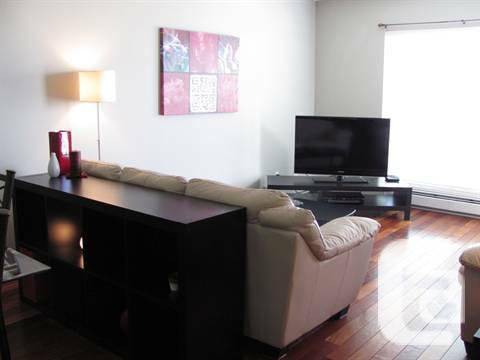 $850 / 1br - Awesome and Furnished Apartment Available