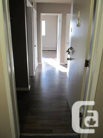 - $970 / 1br - 550ft² - Beautiful 1 bdrm suite for rent