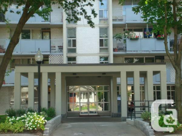 $980 / 1br - Central Location Large Renovated One