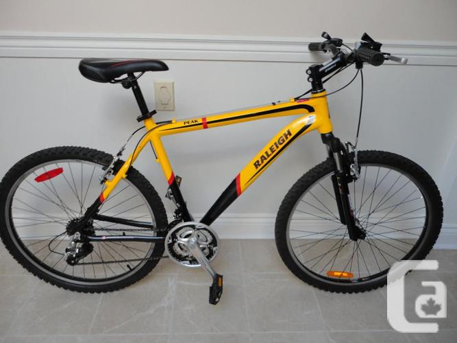 Adult Size 21 Speed RALEIGH Mountain Bike Like New