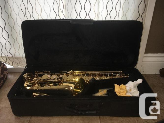 Alto saxophone bundle