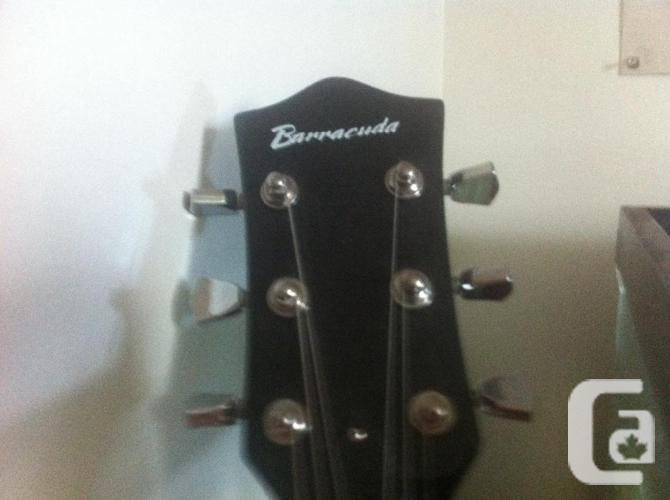 barracuda guitar and amp +stand