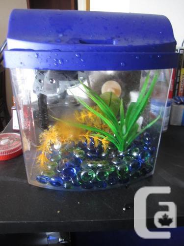 Betta aquarium Aqueon Mini Bend 1