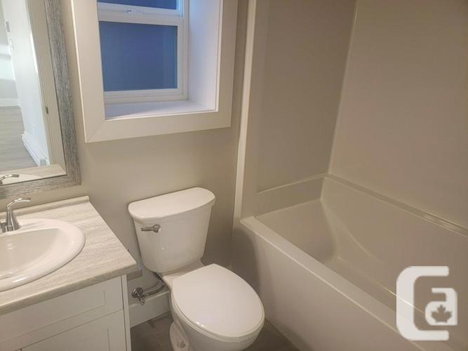 Brand new one bedroom suite