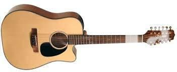 Brand New Takamine 12 string electric acoustic guitar -