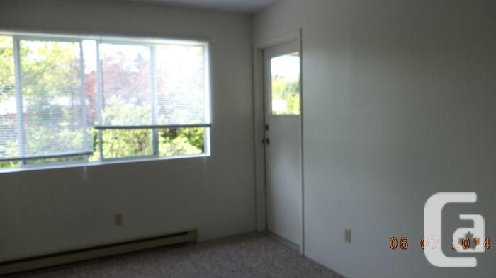 clean quiet one bedroom suites