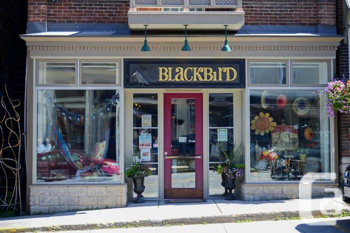 Commerical Property for Rent in Almonte, Ontario