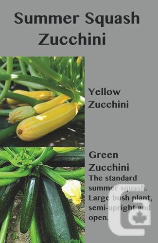 Cucumber, TOMATO and Summer Squash Plant Sale