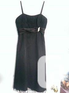 Davinci gown size 6