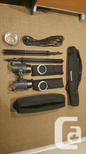 Elincrhom Lighting Kit (2 heads)