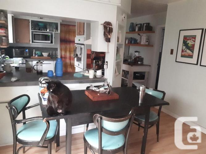 female roomate (in Duncan)