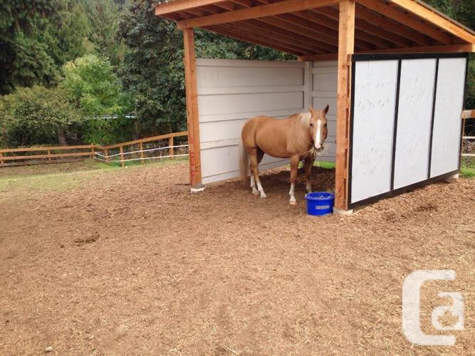Full Horse Boarding