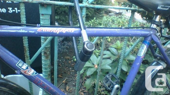 Great Little Purple Bike