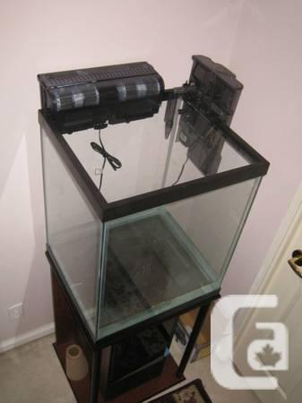 I'm setting up a bigger tank. - $150