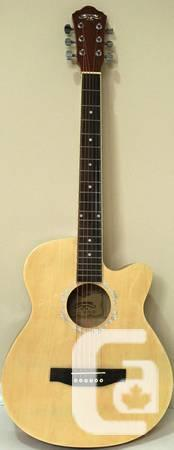 iMusic15 Electric Guitar Completely New for Novice -