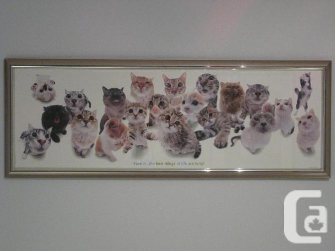 Kids's Framed Cat Image
