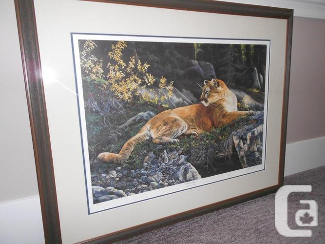 LIMITED EDITION COUGAR PRINT