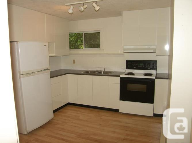 Newly renovated ground level 2 bedroom suite on 1 acre
