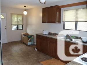 Nice bright 1 bedroom March 1st