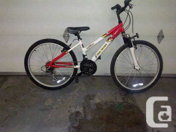 nice girls mountain bike - $80