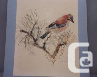 Pair of Vintage Bird Prints