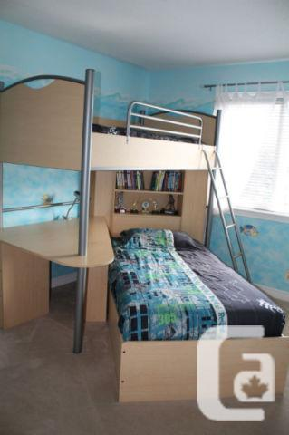 Palliser Loft Bunk Bed With Desk Shelves Maple Bunkbed For Sale In