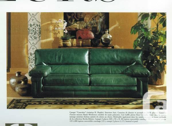 Roche Bobois Colorado Buffalo Leather Sofa Similar Sells K For Sale In Ottawa Ontario