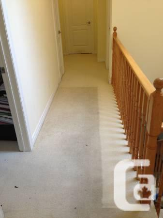 Steam cleaning carpet, rugs, sofa, stain, mattress,