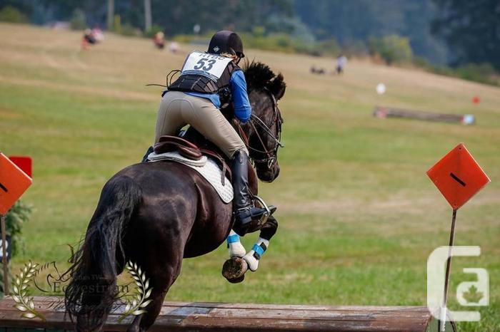 Summer English Riding Camps - July 7,8,9 Nanaimo - CIEC