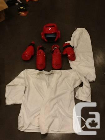 Tae Kwon Do sparring gear - $55