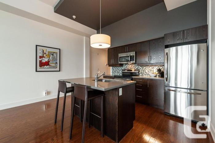 Trendy 2 bedrooms and 1 Bath condo with park view and