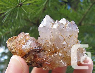 US$15 Spirit Quartz Crystal Cluster Cactus Quartz