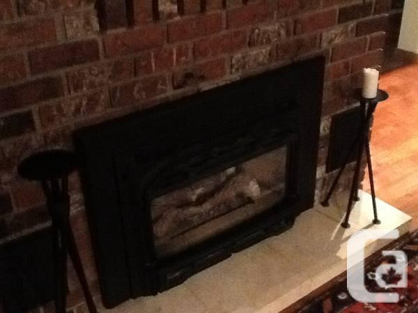 Valour Gas Fireplace Insert - $150