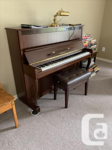 Variety of Pianos