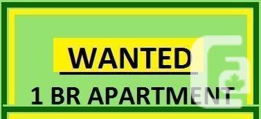 Wanted 1 Bdrm + den for working professional
