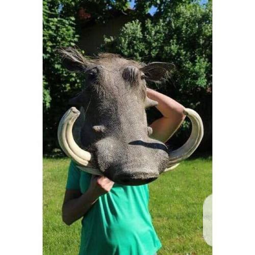 Warthog head mount