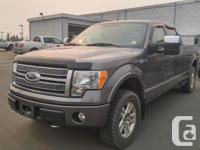 Make Ford Model F-150 Year 2009 kms 76327 Trans