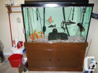 I am selling my 110 gallon freshwater aquarium.